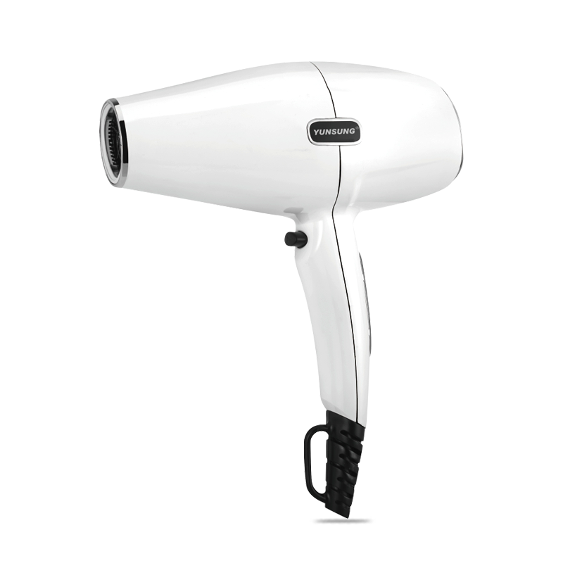 New 2019 Manufactory Price Professional Hair Dryer for Salon Use