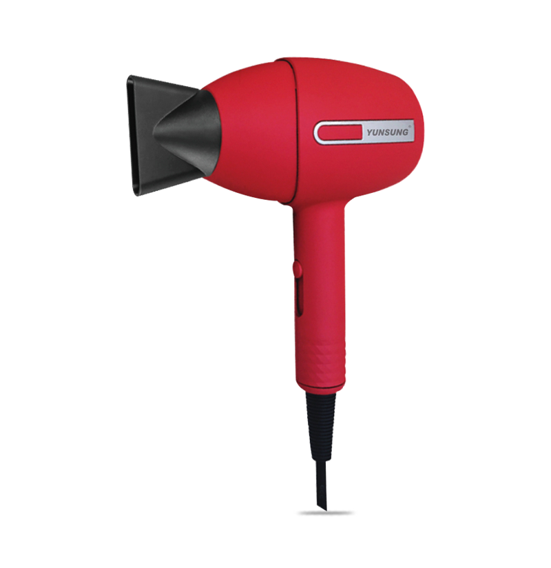 1200W Professional DC motor Hair Dryer