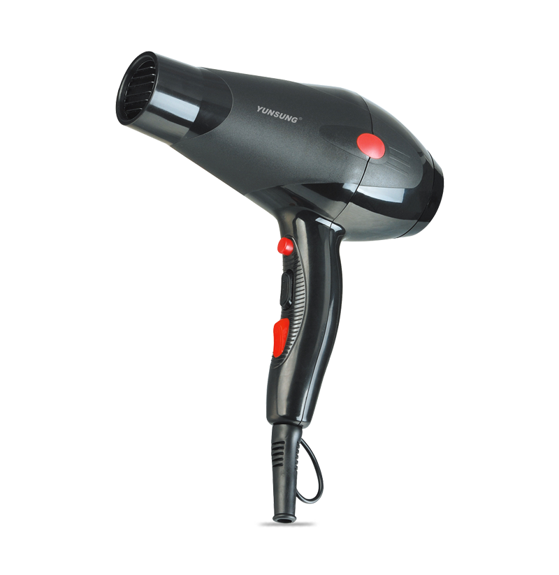High Power Professional Salon Hair Dryer