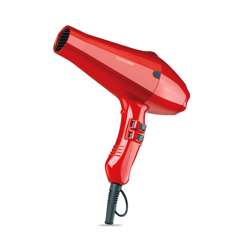 Chinese AC motor professional hair dryer